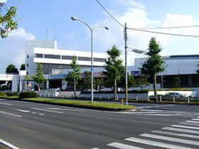 Ichihara Civic Center.jpg